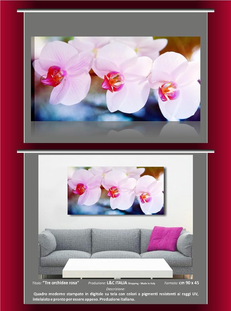 Girasoli tre orchidee rosa tulipani rosa 4 for Quadri moderni orchidee